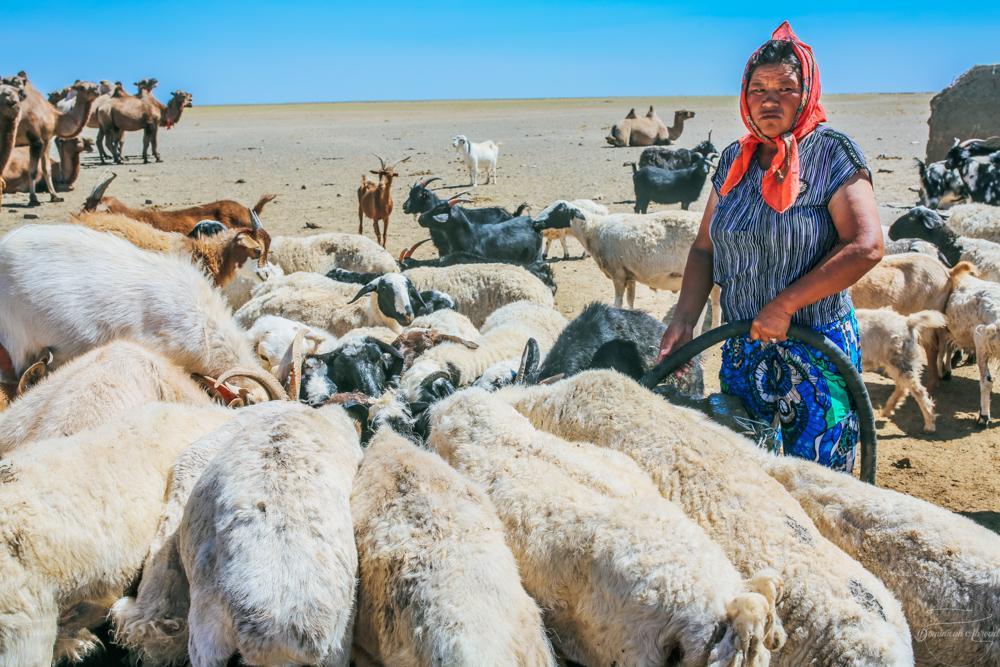 Mongolia Travel