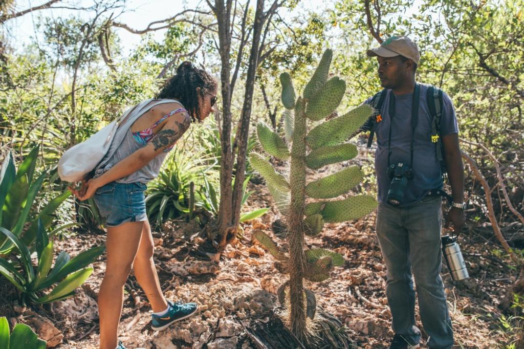 iguanda island oviedo